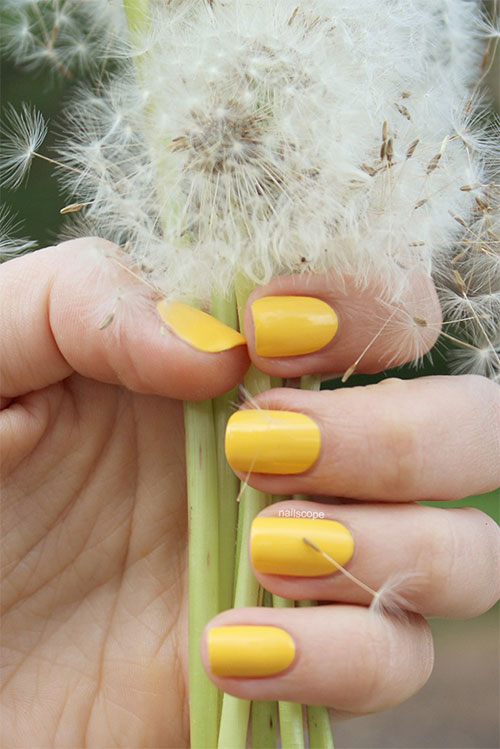 Simple-Easy-Yellow-Nail-Art-Designs-Ideas-2013-2014-9