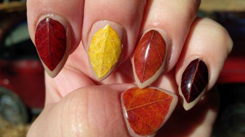 20-Best-Autumn-Nail-Art-Designs-Ideas-2017-11